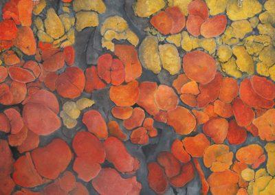 Orange Series