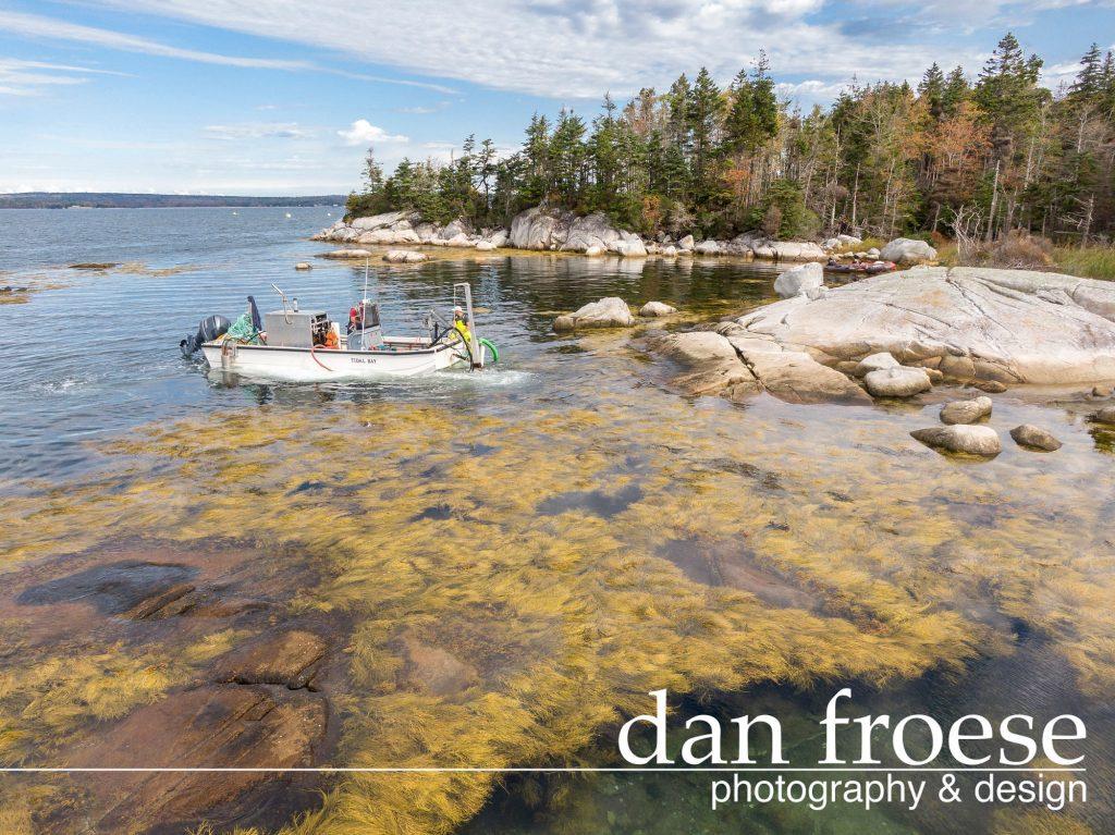 DanFroese-Tidal-Organics-0275