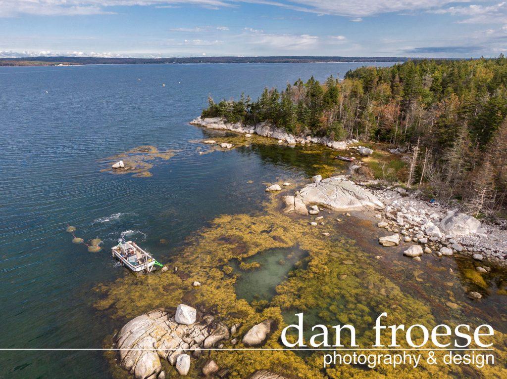 DanFroese-Tidal-Organics-0318